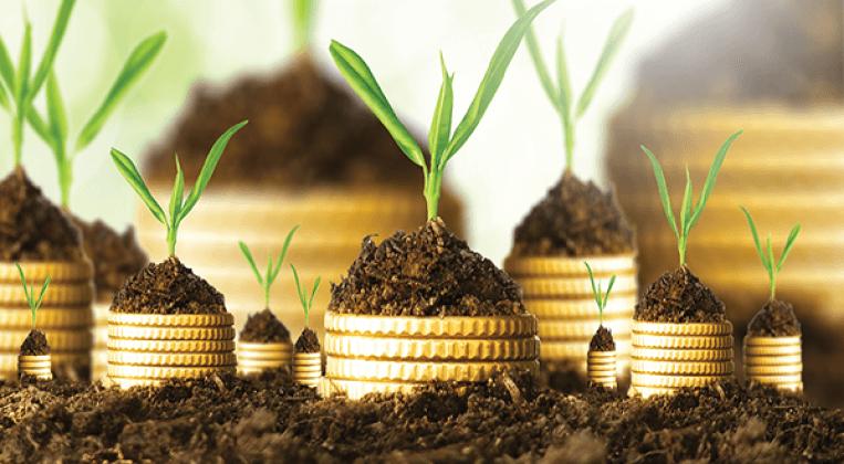 مصطلحات اقتصادية شائعة.. البنوك الإسلامية (Islamic Banks)